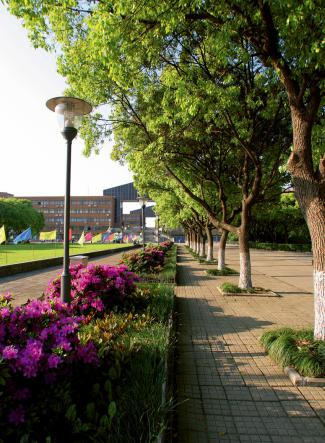 宁波大学怎么样