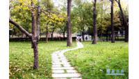 山东大学校园风景