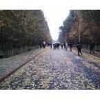 新疆大学科学技术学院怎么样