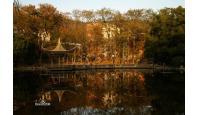 中南大学校园风景